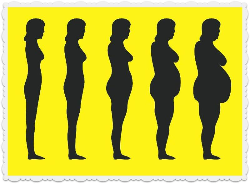 The Link Between Hormones and Belly Fat