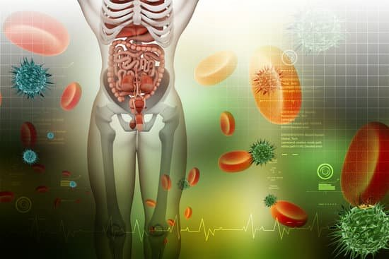 Tips for Managing Autoimmune Disease by Healing Your Gut